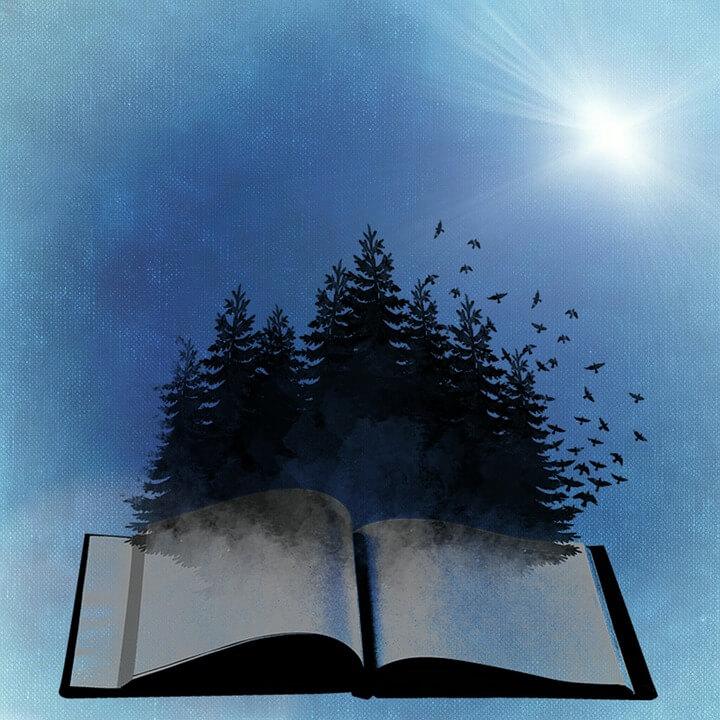 Mystiek-en-literatuur